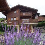 Chalet Cofis for Summer Holidays in Les Gets
